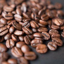 Masterclass - O Melhor Café do Mundo (7 MAIO)