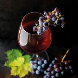 Masterclass - Vinhos Austríacos (8 Maio)